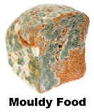 mouldy food