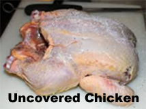 uncovered chicken