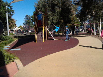 Living and nonliving things playground environment