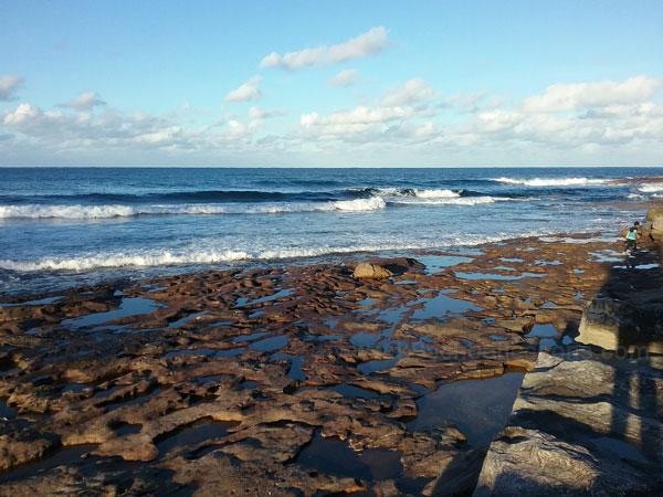 Coasts Shelly Beach Cronulla NSW Australia