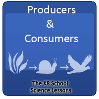 Producers and consumers Producers and consumers