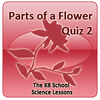 Proverbs Quiz 4 Parts of a Flower Quiz 2