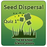 Proverbs Quiz 4 Seed Dispersal Quiz 1