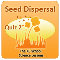 Proverbs Quiz 4 Seed Dispersal Quiz 2