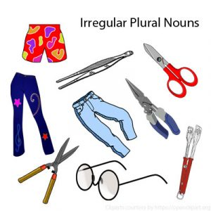 Irregular Plural Nouns 6 Irregular Plural Nouns 6