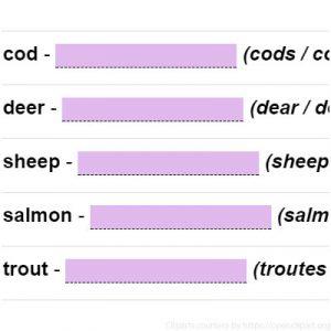 Irregular Plural Nouns 4 Irregular Plural Nouns 4