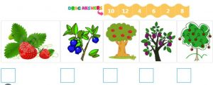 Ordinal Numbers Quiz 4 Number Sequence – Counting by 2s