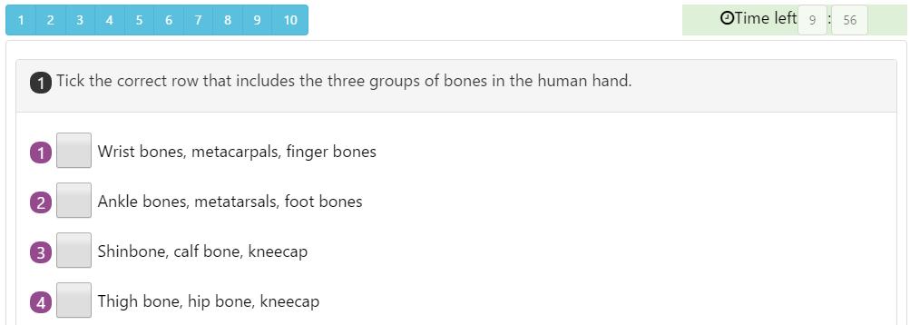 Mixed Numbers Quiz 1 Human Skeleton Quiz 3