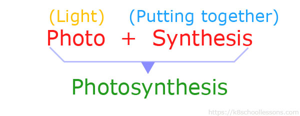 Photosynthesis word meaning