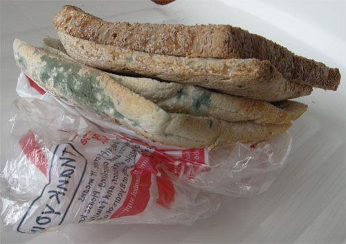 Food spoilage - Mouldy bread