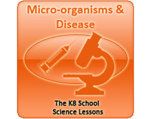 Science Microorganisms and Disease