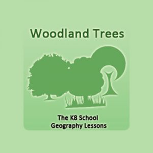 Key Stage Two Woodland Trees