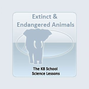 States of Matter Quiz Extinct and Endangered Animals