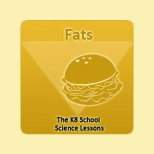Key Stage Two Fatty foods
