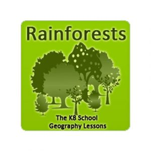 Key Stage Two Rainforests