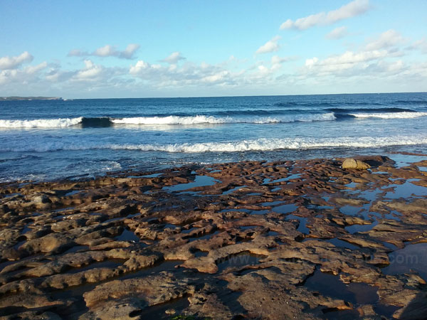 Coasts Shelly Beach Cronulla NSW Australia