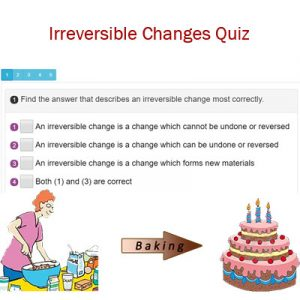 Science Irreversible Changes Quiz
