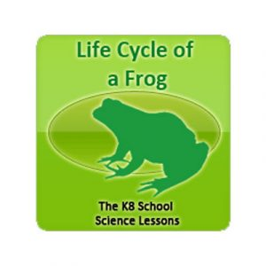Science Life Cycle of a Frog