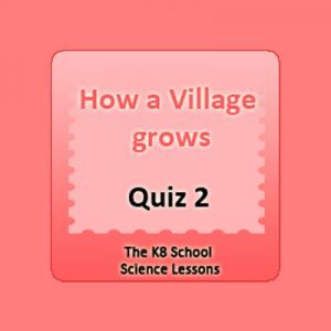 village grows quiz 2