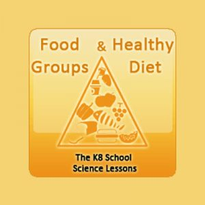 States of Matter Quiz Food Groups and Healthy Diet