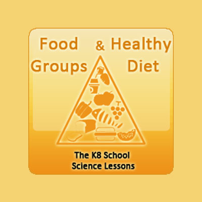 Food Groups and Healthy Diet