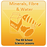 Minerals, Fibre and Water Minerals, Fibre and Water