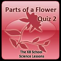Parts of a Flower Quiz 2 Parts of a Flower Quiz 2