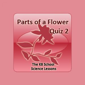 Science Parts of a Flower Quiz 2