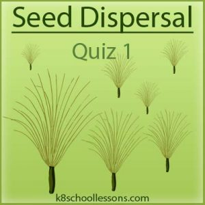 Seed Dispersal Quiz 1 Seed Dispersal Quiz 1