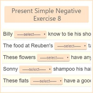 Present Simple Negative Exercise 8