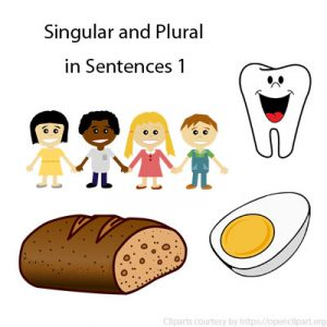Singular and Plural in Sentences 1 Singular and Plural in Sentences 1
