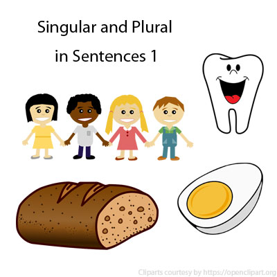 Singular and Plural in Sentences 1 Singular and Plural in Sentences 1