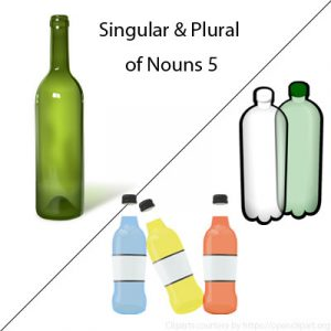 Singular and Plural of Nouns 5 Singular and Plural of Nouns 5