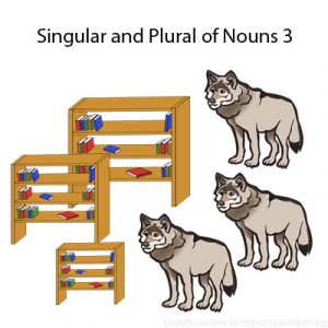 Singular and Plural of Nouns 3 Singular and Plural of Nouns 3
