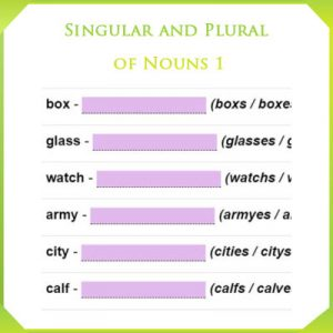 Singular and Plural of Nouns 1 Singular and Plural of Nouns 1