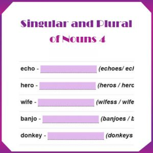 Key Stage One Singular and Plural of Nouns 4