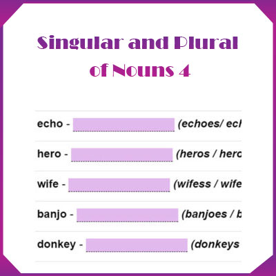 Singular and Plural of Nouns 4 Singular and Plural of Nouns 4