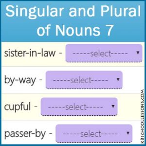 Singular and Plural of Nouns 7 Singular and Plural of Nouns 7