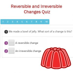 Science Reversible and Irreversible Changes Quiz