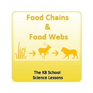 Key Stage Two Food Chains Quiz 3
