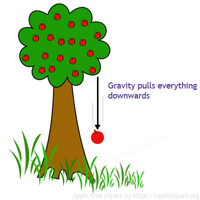 Gravity for kids - Gravity constantly pulls things toward the ground