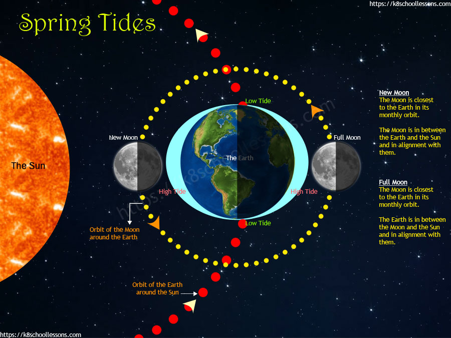 Gravity for kids - How spring tides occur?