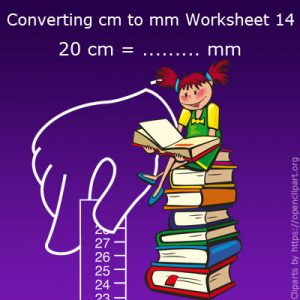 Converting cm to mm Worksheet 14