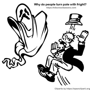 Why do people turn pale with fright
