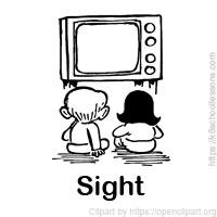 senses-eyes-sight