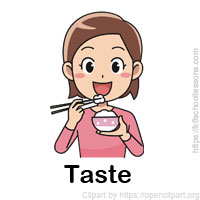 senses-tongue-taste