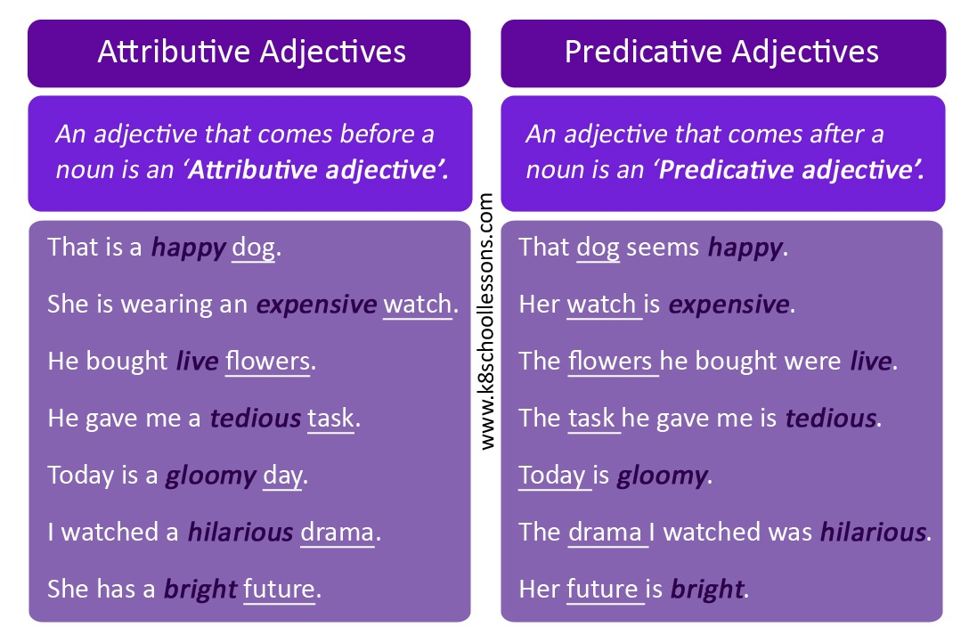 Types of adjectives - Examples of attributive and predicative adjectives